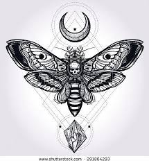 best 25 moth drawing ideas on pinterest moth tattoo giclee
