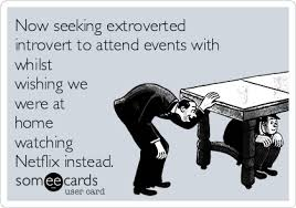 Seeking Netflix Now Seeking Extroverted Introvert To Attend Events With Whilst
