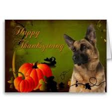 gobble gobble happy thanksgiving card happy thanksgiving