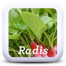 cuisiner les fanes de radis 7 recettes pour cuisiner les fanes de radis je cuisine mon potager
