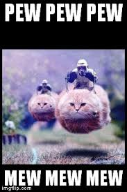 Flying Cat Meme - flying cat stormtrooper meme generator imgflip