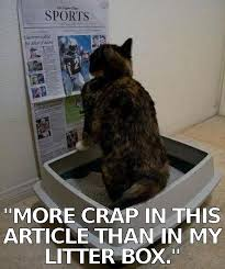 Newspaper Cat Meme - wednesday 04 04 2018 just how does one address hug a newsman