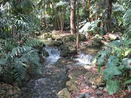 Florida Home Interiors Botanical Gardens South Florida Gqwft Com