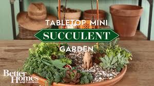 Table Top Herb Garden Tabletop Mini Succulent Garden Youtube