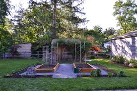 Make A Vegetable Garden by The Princess And The Frog Blog The Start Of A Small Vegetable