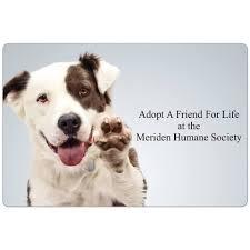 meriden humane society home facebook
