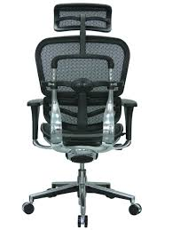 Office Mesh Chair by Eurotech Me7erg Mesh Office Chair With Headrest By Raynor On The