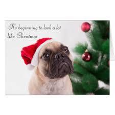 bulldog christmas cards u0026 invitations zazzle co uk