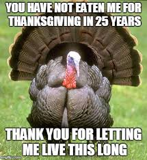Thanksgiving Day Memes - turkey memes imgflip
