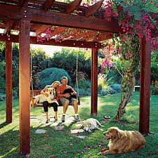 Backyard Landscaping With A Dog Pdf