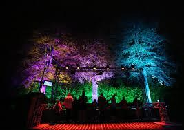illuminating lights decor