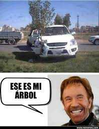 Memes De Chuck Norris - chuck norris y su arbol meme by lalokita memedroid