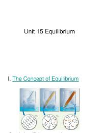 a pun it 14 equilibrium chemical equilibrium chemical reactions