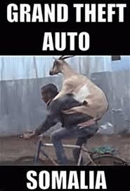 Somali Memes - th id oip dmr6fllv1mujfjt0mti7qwhak4