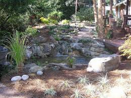 Backyard Pond Building Professional Pond Builders Perspective On A Backyard Pond Makeover