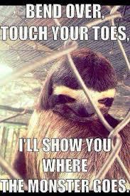 Rapist Sloth Meme - 51 best rapist sloth images on pinterest sloth sloths and
