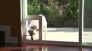 making doggie door for sliding glass door