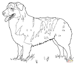 blake pooh husky puppy coloring pages gallery of top puppy 17