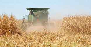 irrigated corn 2012 dryland irrigated corn yield potential based on model