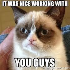 Working Cat Meme - it was nice working with you guys grumpy cat meme generator