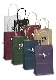 personalized gift bags personalized toto matte paper gift bags bm34p58 discountmugs