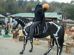 Halloween Costumes Horse 11 Horse Costume Show Images Horse Costumes