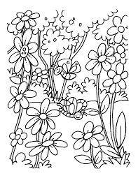blooming field flowers coloring pages download free