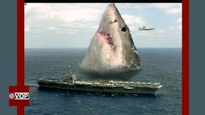 biggest megalodon shark megalodon shark exists world s biggest shark ever found voice of