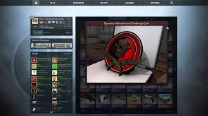cs go buying operation bloodhound coin