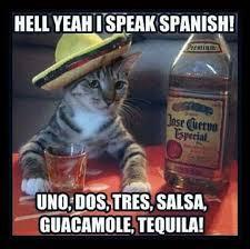 Speak Spanish Meme - hell yeah i can speak spanish uno dos tres salsa