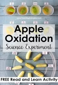 apple oxidation science experiment with free science reading