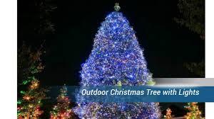 christmas tree with lights outdoor christmas tree with lights