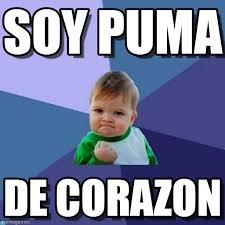 Puma Meme - soy puma success kid meme on memegen