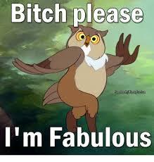 I Am Fabulous Meme - bitch please facebook disnsyironica i m fabulous bitch meme on