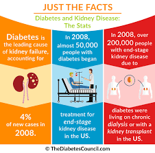 diabetes and renal failure everything you need to know