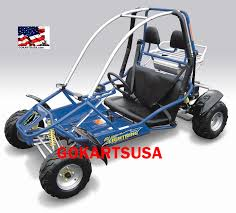blue lightning 150cc go kart