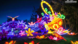 when does the lights at the toledo zoo start toledo zoo to light up nights with lantern exhibit wnwo