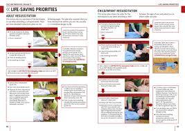 first aid manual dk 9781409342007 amazon com books