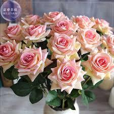 fragrant climbing roses promotion shop for promotional fragrant