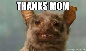 Rat Meme - thanks mom ugly rat meme generator