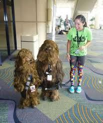 Wookie Halloween Costume Wookiee Toddlers Cute Intimidating Neatorama