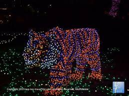 160 best christmas holiday light shows festivals u0026 more images