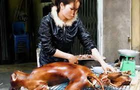 chien cuisiné en chine on mange du chien depuis des millénaires michelduchaine