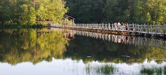 Island Lake State Park Map by Find A Park U2014 Tennessee State Parks