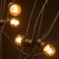 vintage light bulb strands vintage edison 20 bulb party lighting 240v