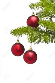three decoration balls in tree branch with negative