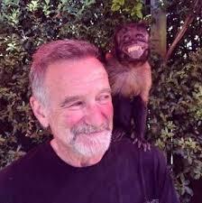 Robin Williams Meme - put me like the last known photo of robin williams taken 3 weeks