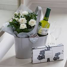 white wine a small little plant a simple gift gift ideas