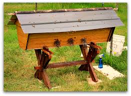 Top Bar Beehive Plans Free Beehive Sequel Deluxe Top Bar Hive For My Bees