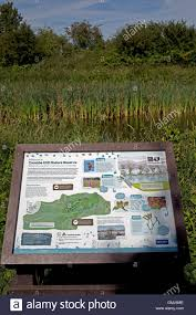 Map Near Me Information Display Board With Trail Map Coombe Hill Canal Stock